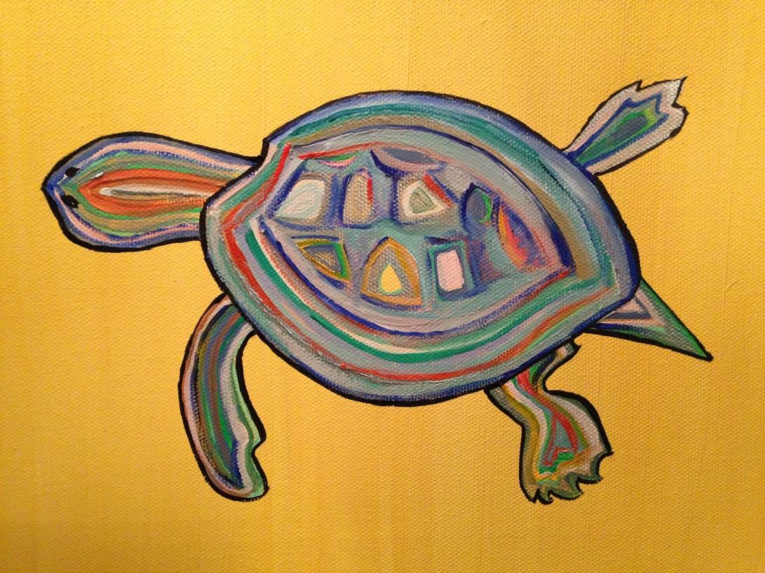 Leo's Turtle, Jan 2014
